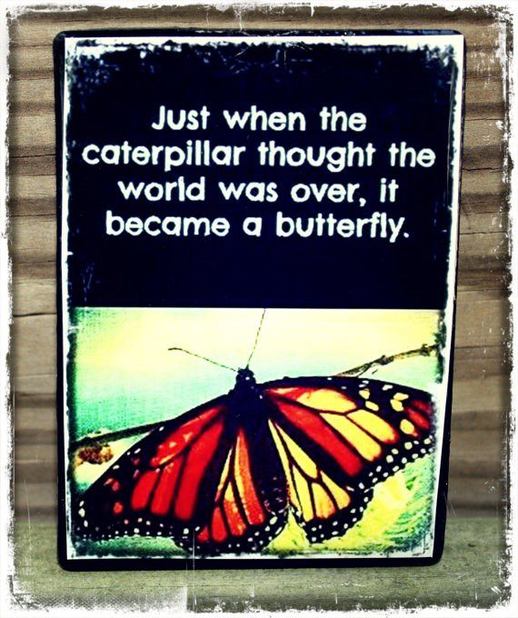 Just When The Caterpillar Thought The World Was Over, It Became A Butterfly. - Uplifting Quote
