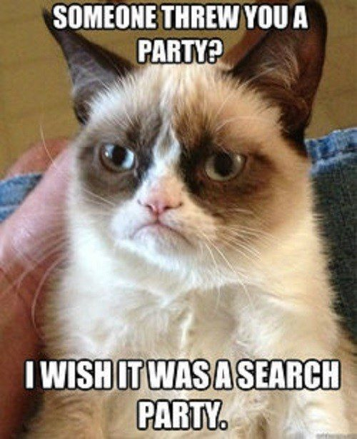 Someone Threw You A Party? I Wish It Was A Search Party - grumpy cat meme