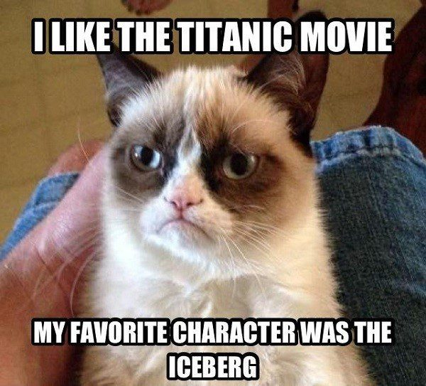 I Like The Titanic Movie, My Favorite Character Was The Iceberg