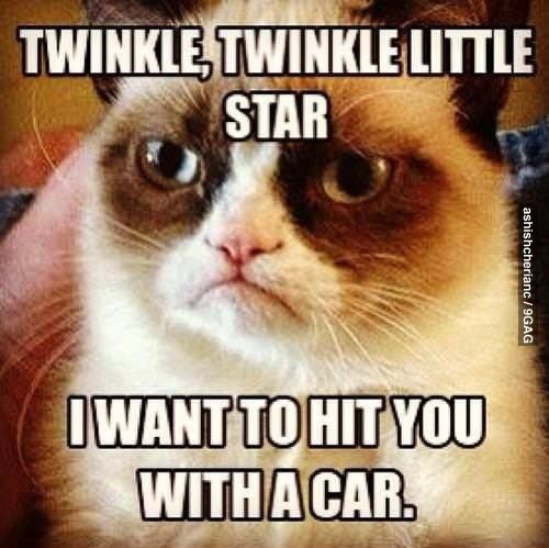 Twinkle Twinkle Little Star, I Want To Hit You With A Car. - grumpy cat meme