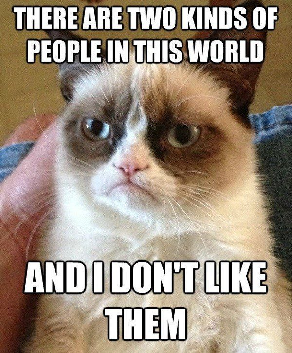 There Are Two Kinds Of People In This World, And I Don't Like Them. - grumpy cat meme