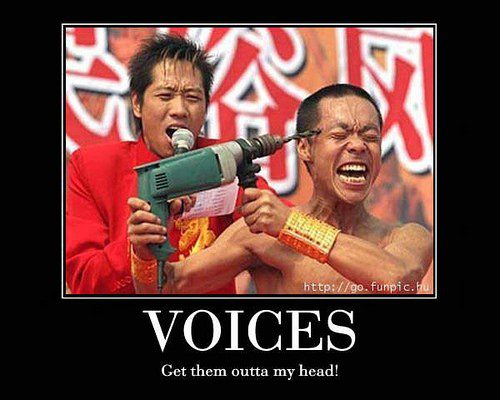 Voices In My Head - funny caption photo