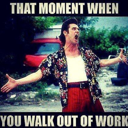 The 50 Best Work Memes