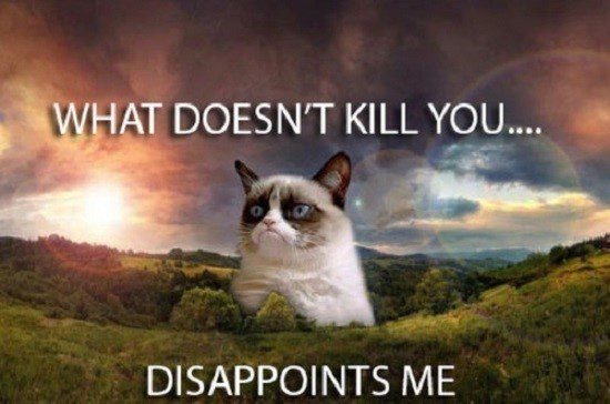 What Doesn't Kill You... Disappoints Me. - grumpy cat meme