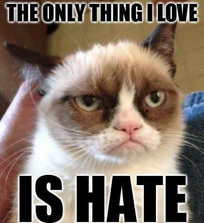 The Only Thing I Love Is Hate - grumpy cat meme