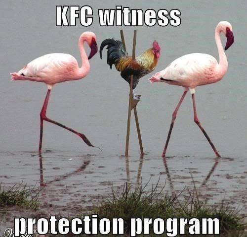 KFC Witness Protection - really funny picture