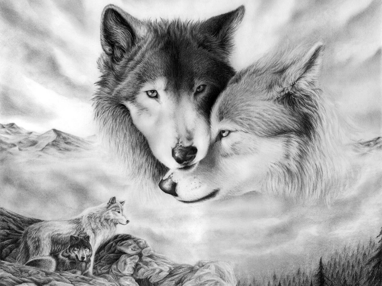 The 50 Best Wolf Wallpapers