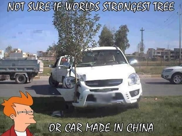 Strong Tree Or Car Made In China - Funny Image Meme
