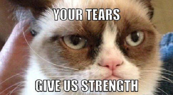 Your Tears Give Us Strength - grumpy cat meme