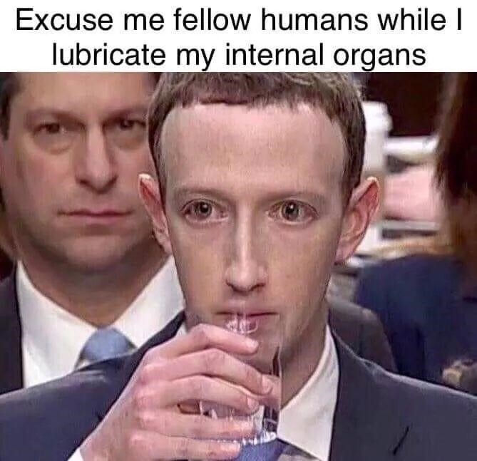 Mark Zuckerberg Meme - Congress - Court - Water - Reptile - Lizard - Robot