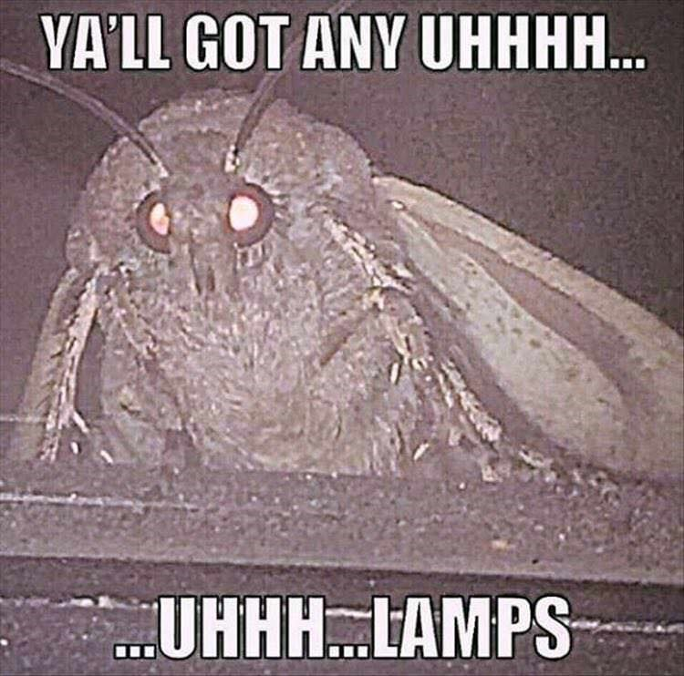you got any lamps - moth meme
