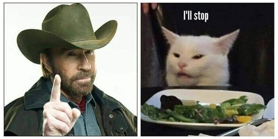 Chuck Norris And The Cat