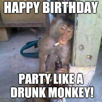 Party Like A Drunk Monkey Birthday Meme