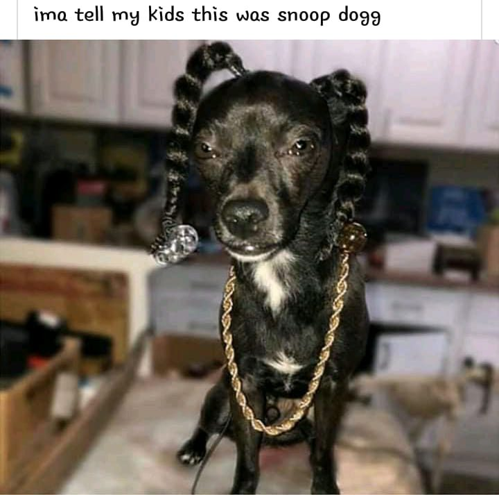 This Was Snoop Dogg