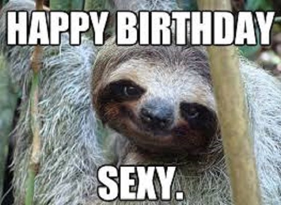 Sloth Happy Birthday
