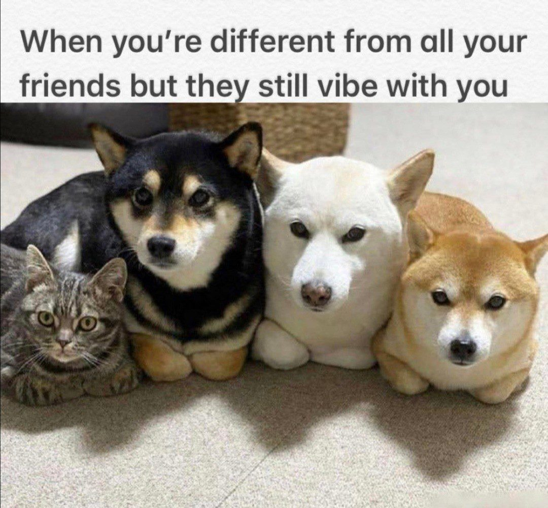 Different From Your Freinds
