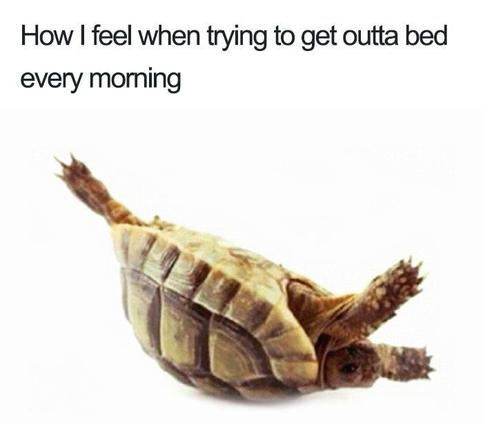 Getting Out Of Bed