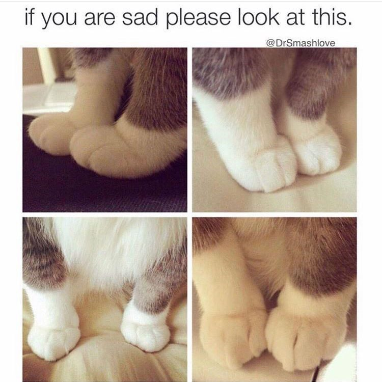 If You Are Sad