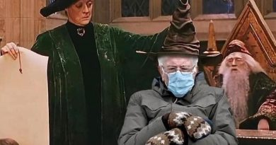 Bernie Harry Potter